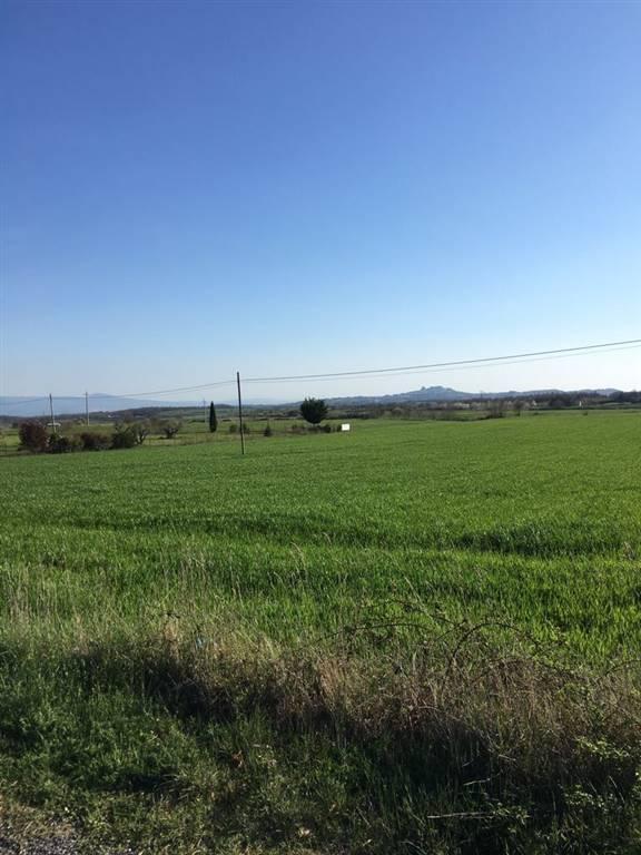 Terreno Agricolo in vendita a Bagnoregio, 1 locali, prezzo € 42.000 | CambioCasa.it
