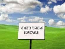 terreno edificabile Vendita Povegliano Veronese