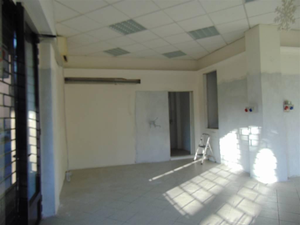 Piacenza annunci immobiliari di case e appartamenti nella for Negozio con planimetrie abitative