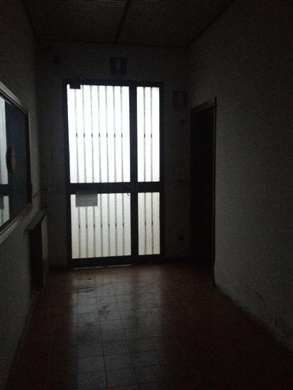 capannone Affitto Luzzara