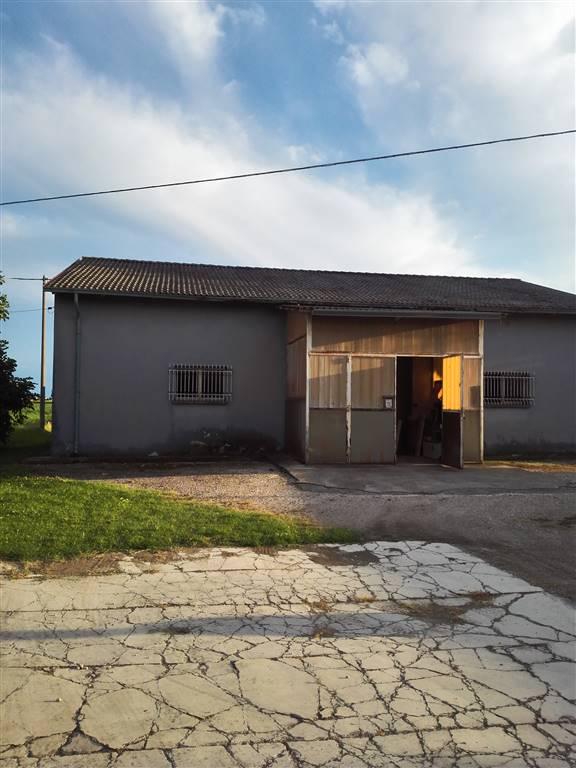 Attività / Licenza in vendita a San Benedetto Po, 9999 locali, zona Zona: Portiolo, prezzo € 100.000 | Cambio Casa.it