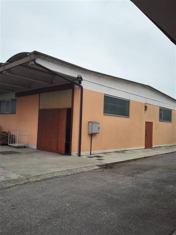 Laboratorio in affitto a Gonzaga, 9999 locali, Trattative riservate | Cambio Casa.it