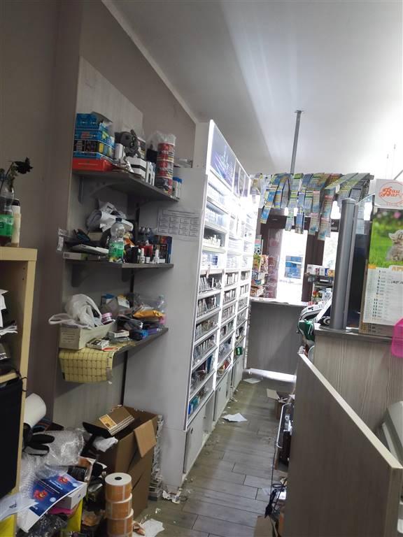 negozio Vendita San Benedetto Po