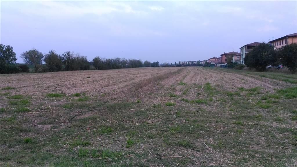 terreno edificabile Vendita Bagnolo San Vito