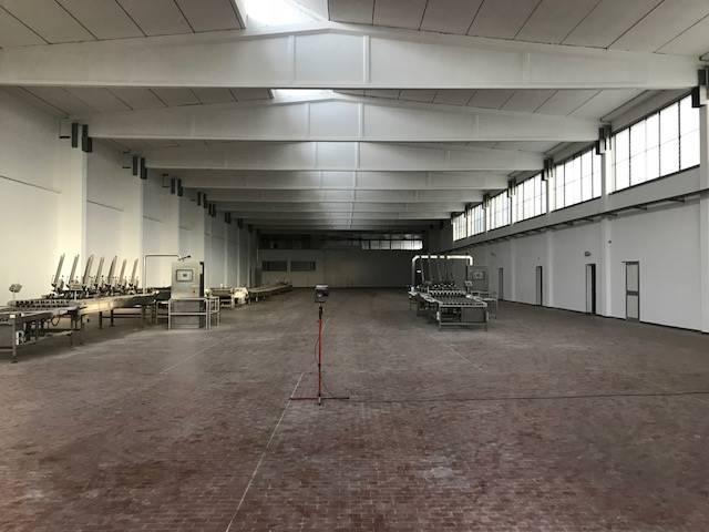 capannone Affitto Reggiolo