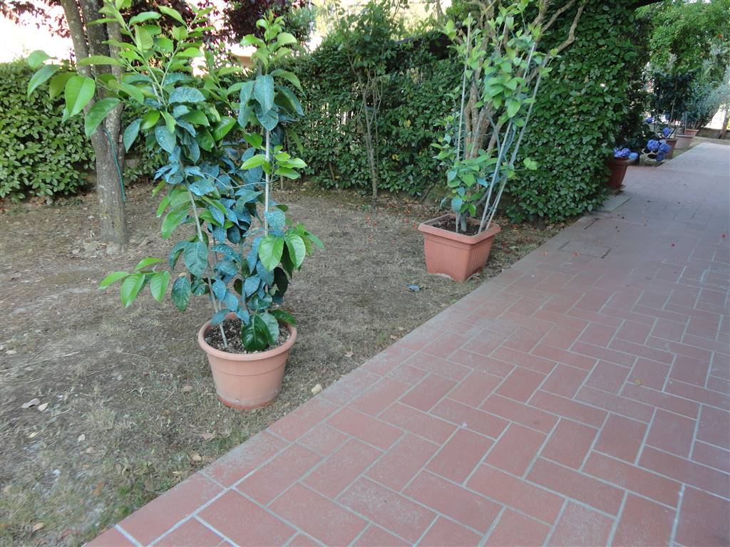 Appartamento in affitto a Certaldo, 3 locali, zona Località: CENTRO, prezzo € 450 | CambioCasa.it