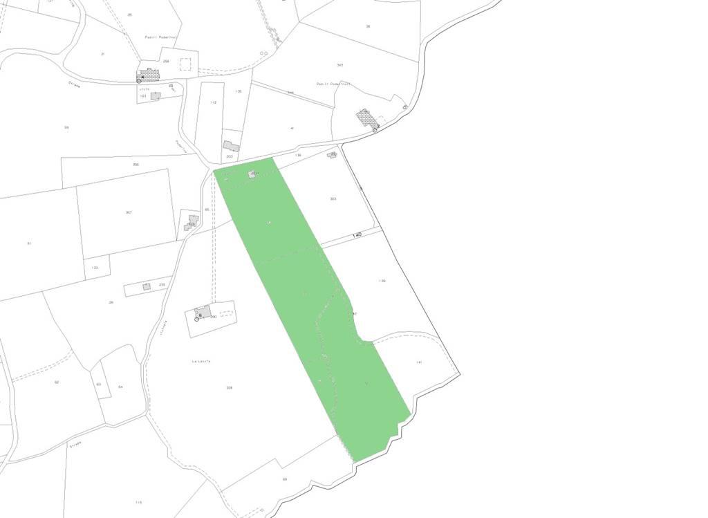 Terreno Agricolo in Vendita a Bibbona