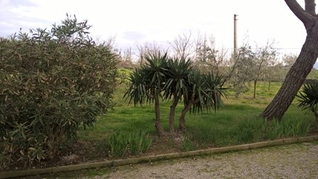 Villa in vendita a Poggibonsi, 8 locali, Trattative riservate | Cambio Casa.it