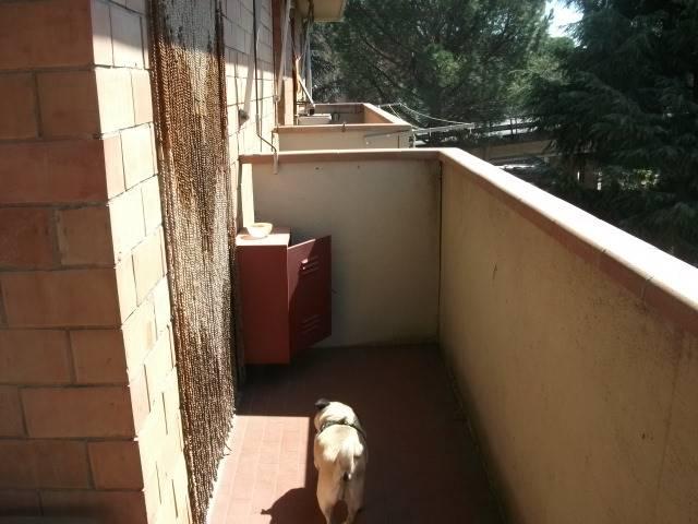 Appartamento in affitto a Poggibonsi, 4 locali, Trattative riservate   Cambio Casa.it