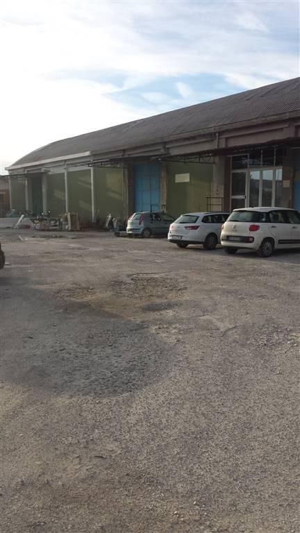 Capannone di mq.1000 attualmente suddiviso in 2 unità, alloggio custode di mq.55 circa con giardino, mq. 50 di uffici, garage di 25 mq e piazzale di