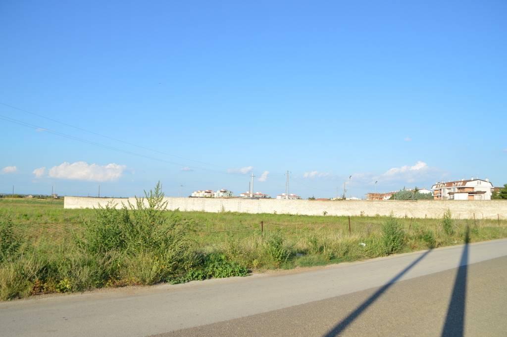 Terreno Agricolo in Vendita a Lavello