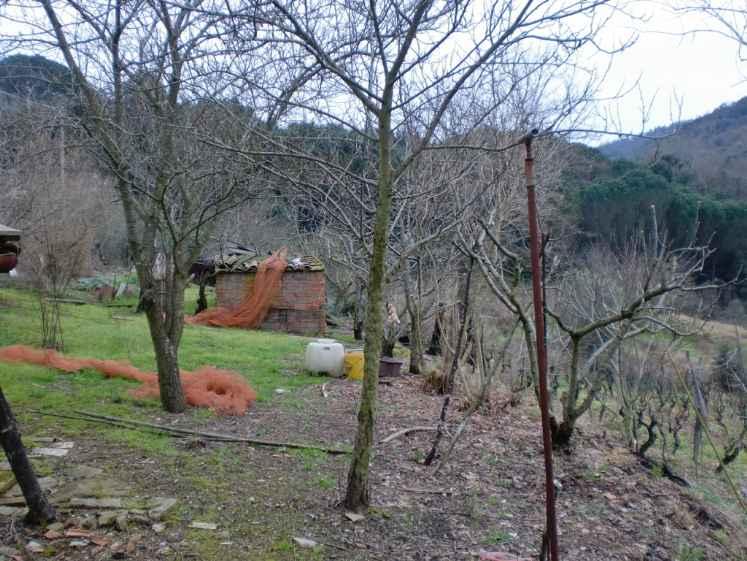 Altro in vendita a Castagneto Carducci, 2 locali, prezzo € 140.000 | Cambio Casa.it