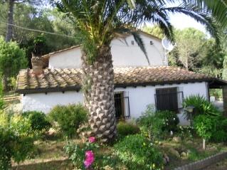 Soluzione Indipendente in vendita a Riparbella, 9 locali, prezzo € 360.000 | Cambio Casa.it