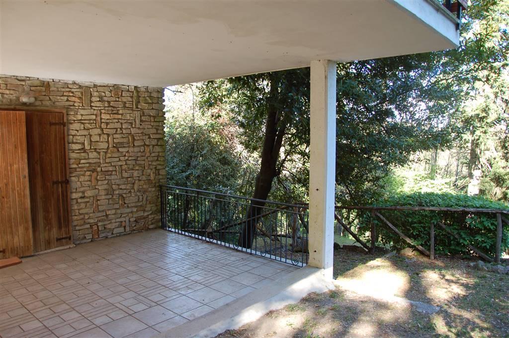 Villa in Vendita a Sassetta
