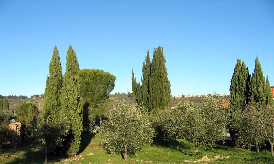 Azienda Agricola in vendita a Tavarnelle Val di Pesa, 6 locali, prezzo € 1.300.000 | Cambio Casa.it
