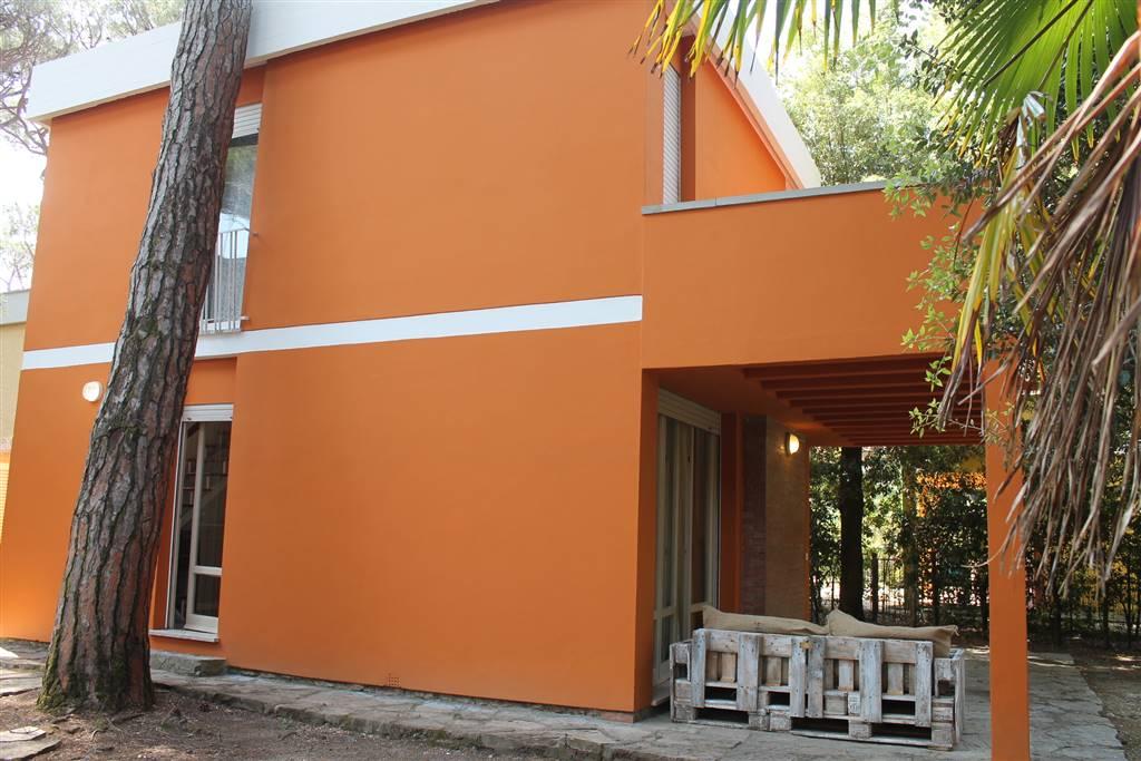 Villa in Affitto a Castagneto Carducci