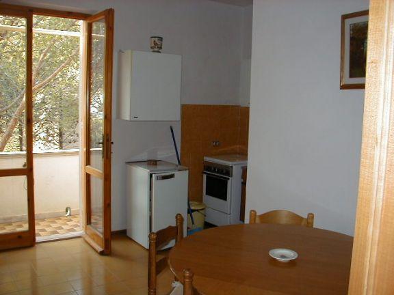 Appartamento affitto Rosignano Marittimo (LI) - 3 LOCALI - 50 MQ