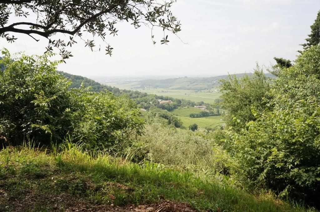 Terreno Edificabile Residenziale in vendita a Lavagno, 9999 locali, zona Zona: San Briccio, prezzo € 115.000 | Cambio Casa.it