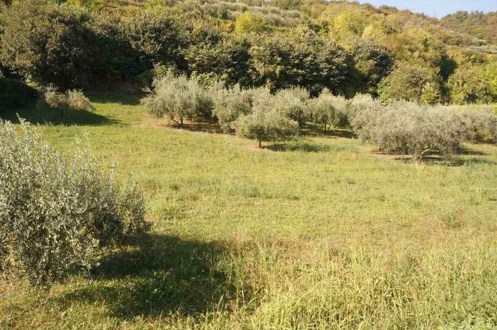 Terreno Edificabile Residenziale in vendita a San Martino Buon Albergo, 9999 locali, prezzo € 149.000 | CambioCasa.it