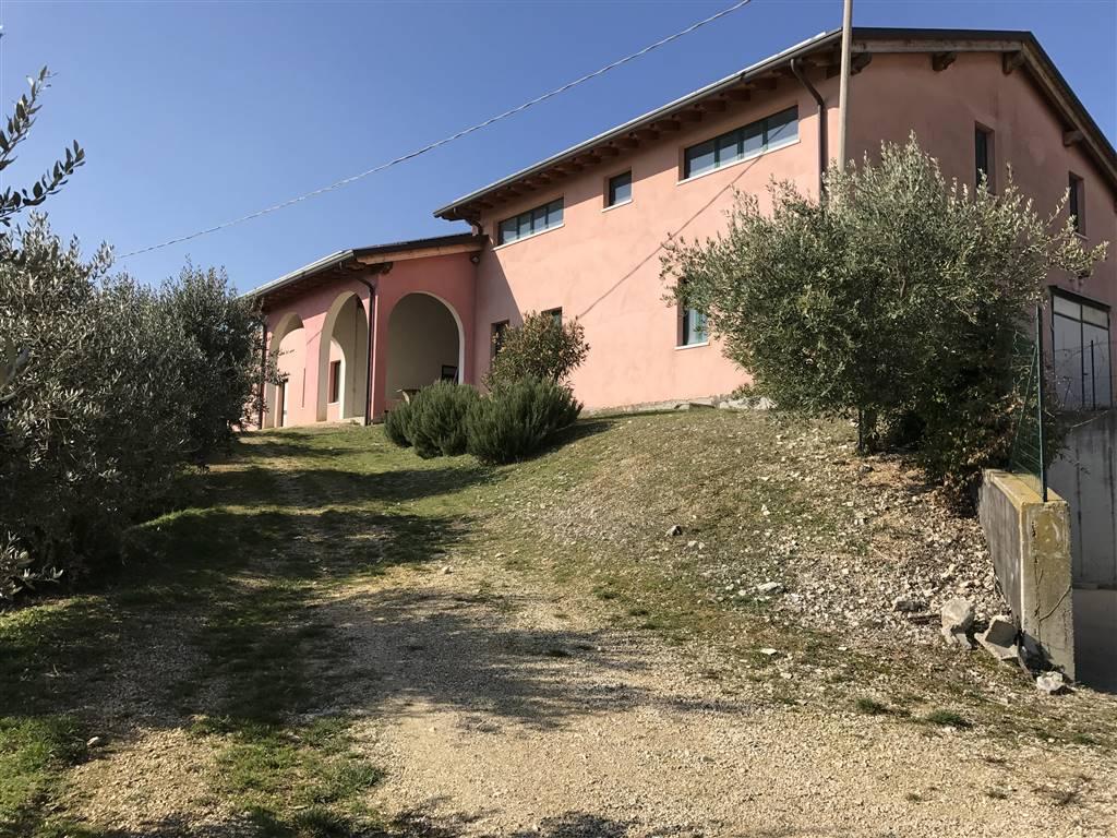 Azienda Agricola in vendita a Mezzane di Sotto, 1 locali, prezzo € 2.550.000 | CambioCasa.it