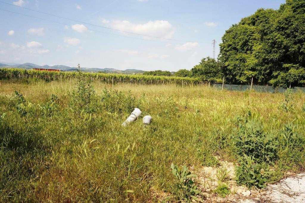 Terreno Edificabile Residenziale in vendita a Colognola ai Colli, 9999 locali, zona Località: STRA DI COLOGNOLA, prezzo € 218.000 | Cambio Casa.it