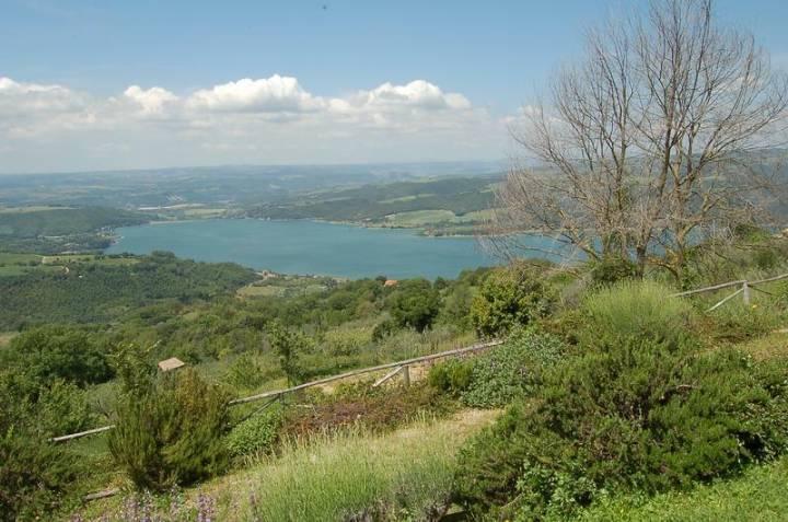 Rustico / Casale in vendita a Baschi, 6 locali, zona Zona: Civitella del Lago, prezzo € 400.000 | Cambio Casa.it