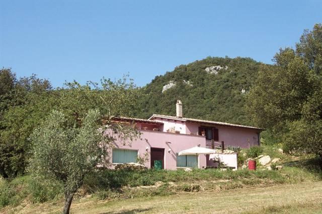 Soluzione Indipendente in vendita a Amelia, 12 locali, prezzo € 250.000 | CambioCasa.it