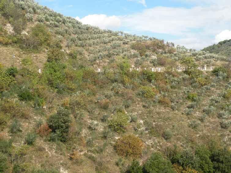Altro in vendita a Spoleto, 9999 locali, zona Località: PERIFERIA, prezzo € 60.000 | Cambio Casa.it