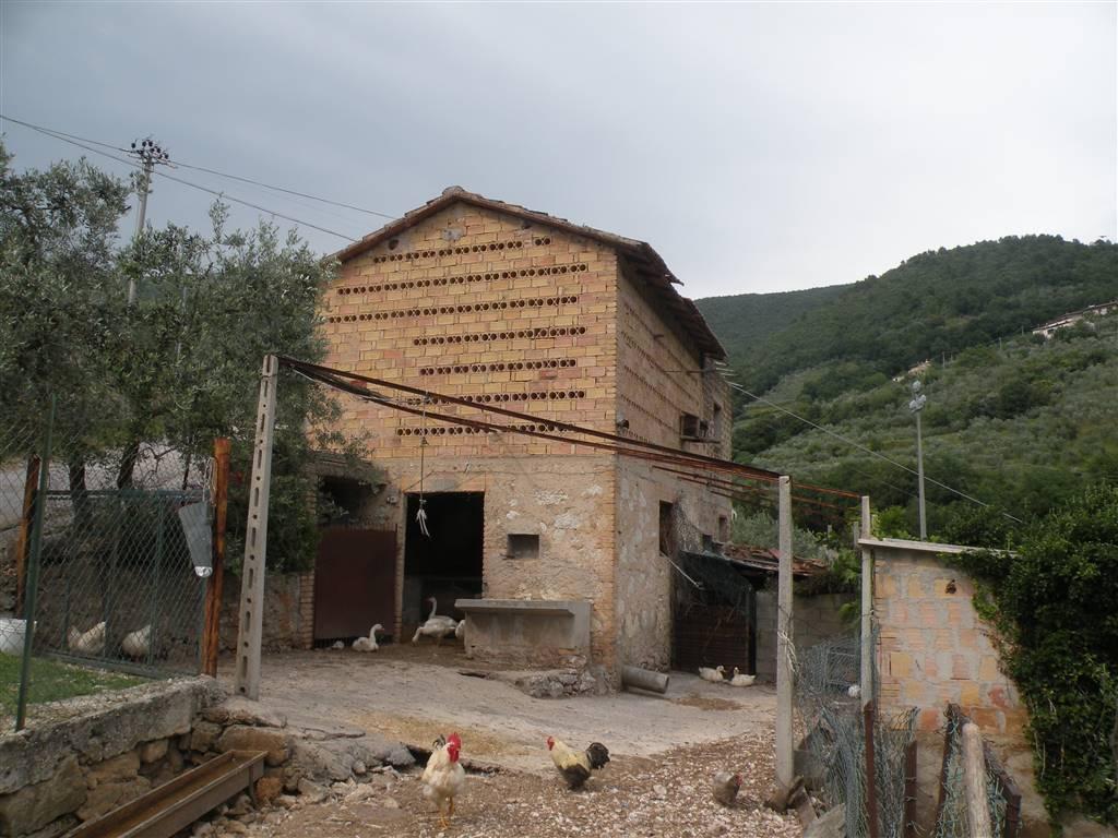 Rustico / Casale in Vendita a Campello sul Clitunno