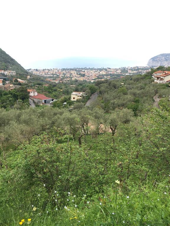 terreno  in Vendita a Sant'Agnello