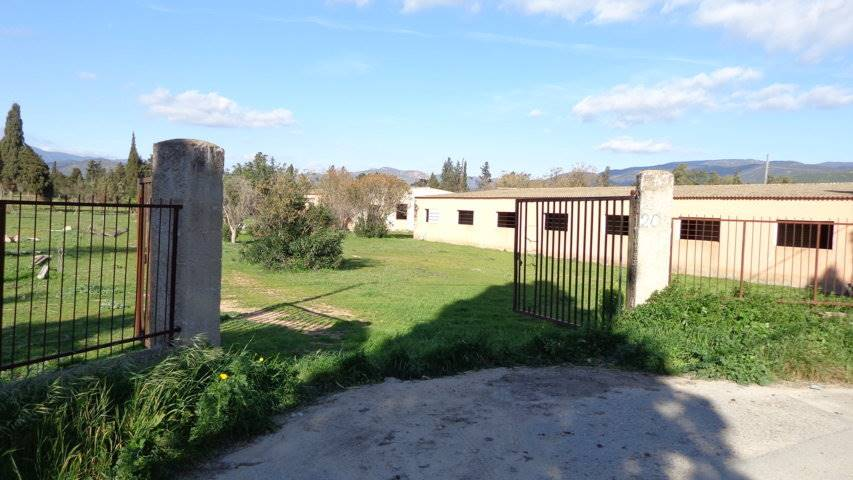Azienda Agricola in Vendita a Quartucciu