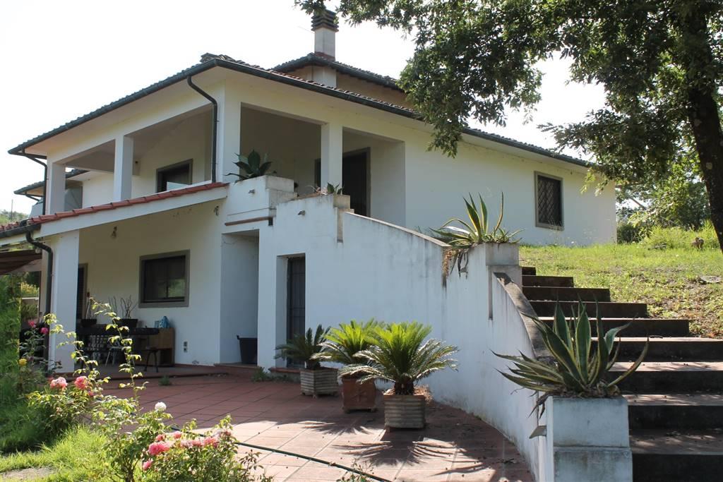 Villa in Vendita a Carmignano