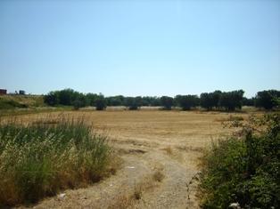 Terreno Agricolo in vendita a Mesagne, 9999 locali, prezzo € 42.000 | Cambio Casa.it