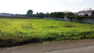 Terreno Edificabile Residenziale in vendita a Mesagne, 9999 locali, zona Località: C.DA TORRETTA, prezzo € 130.000 | Cambio Casa.it