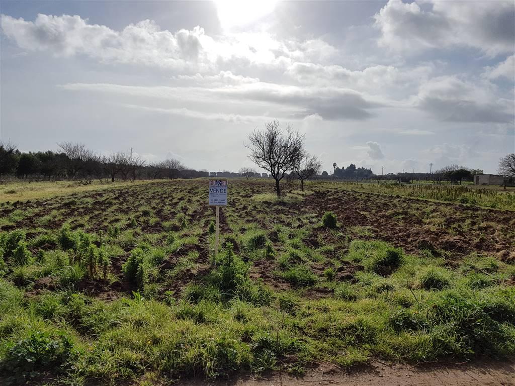 Terreno Agricolo in vendita a Brindisi, 9999 locali, zona Località: I PRETI, prezzo € 5.000 | Cambio Casa.it
