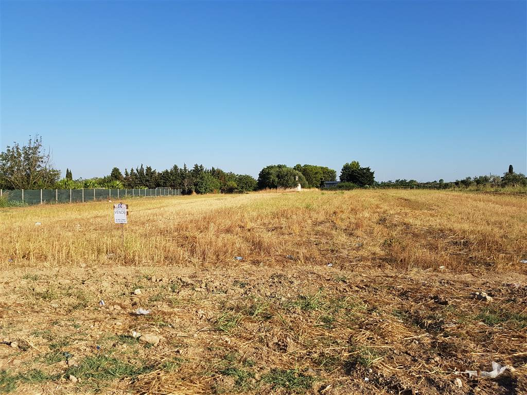 Terreno Agricolo in vendita a Mesagne, 9999 locali, zona Località: C.DA TUMO, prezzo € 50.000   CambioCasa.it