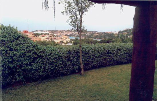 Villa in Vendita a Arzachena: 4 locali, 100 mq - Foto 3