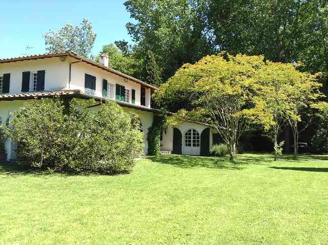 Villa in Vendita a Forte Dei Marmi: 5 locali, 620 mq - Foto 5