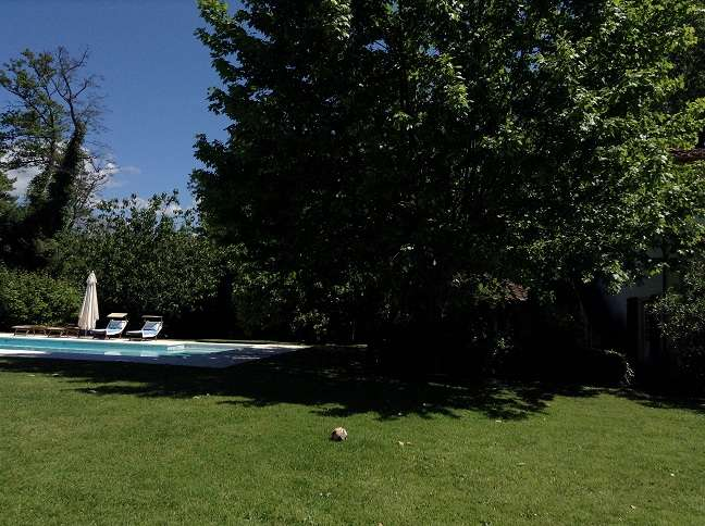 Villa in Vendita a Forte Dei Marmi: 5 locali, 620 mq - Foto 9