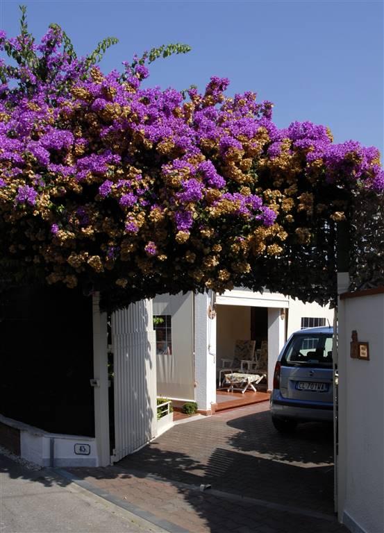 Villa in Vendita a Forte Dei Marmi: 5 locali, 180 mq - Foto 1