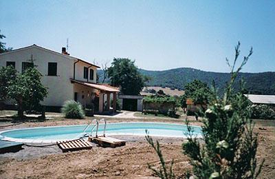 Azienda in Vendita a Grosseto: 800 mq