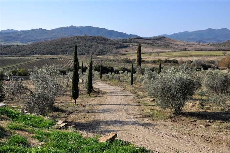 Azienda agricola, Gavorrano