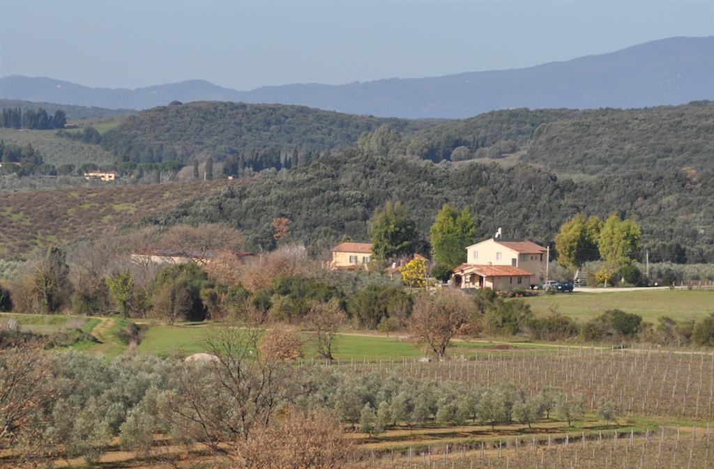 Agriturismo in Vendita a Massa Marittima: 5 locali, 730 mq
