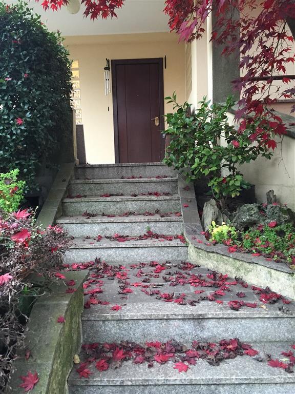 Villa a Schiera in Affitto a Basiglio