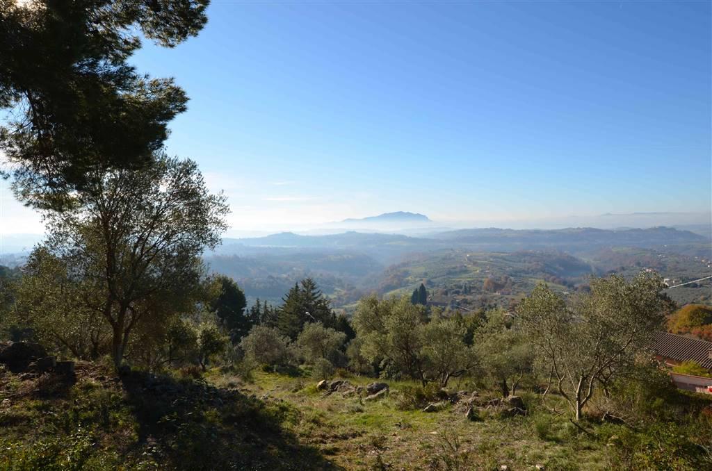 Terreno Edificabile Residenziale in Vendita a Montebuono