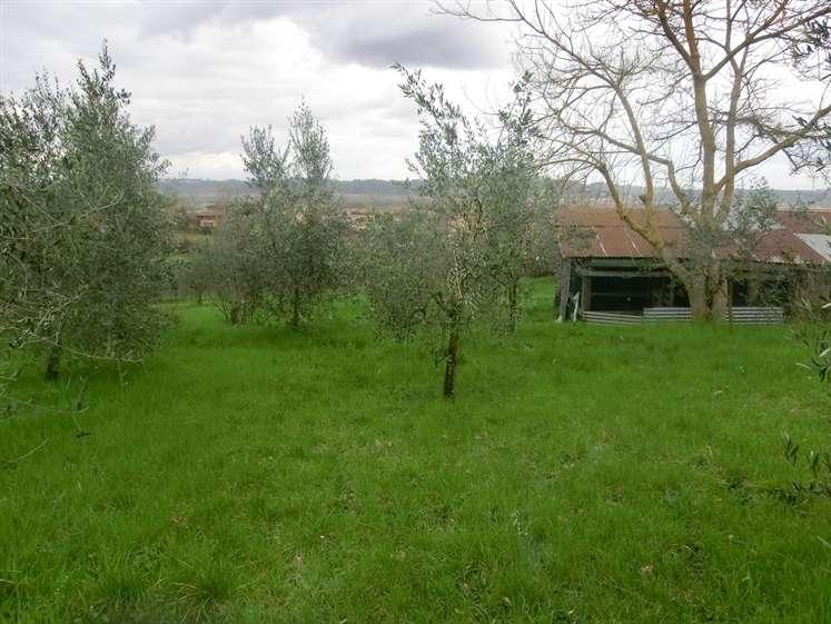Terreno Edificabile Residenziale in vendita a Capannoli, 9999 locali, zona Zona: Solaia, prezzo € 60.000 | CambioCasa.it