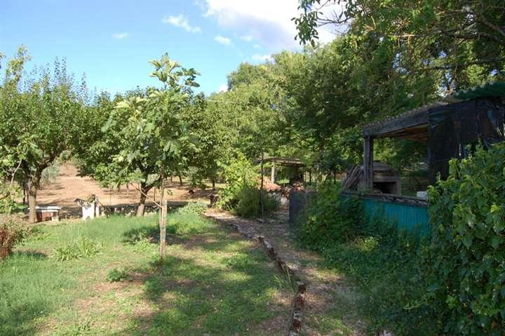 Terreno Agricolo in vendita a Spoleto, 9999 locali, zona Località: PERIFERIA, prezzo € 70.000 | Cambio Casa.it