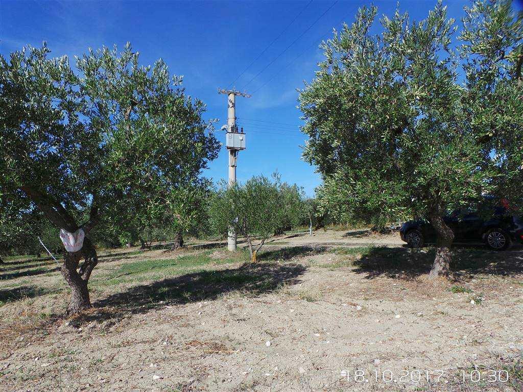 Terreno Agricolo in vendita a Matera, 1 locali, zona Zona: Periferia Nord, prezzo € 20.000 | CambioCasa.it