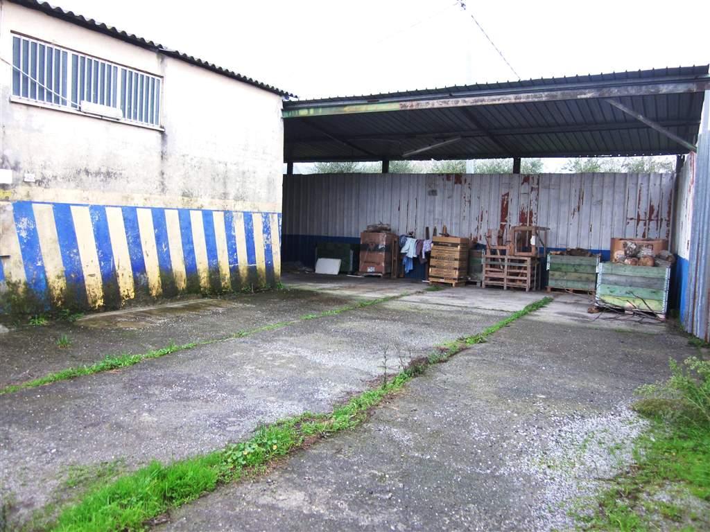 Capannone in affitto a Sarzana, 9999 locali, zona Località: SARZANA, prezzo € 1.450 | Cambio Casa.it