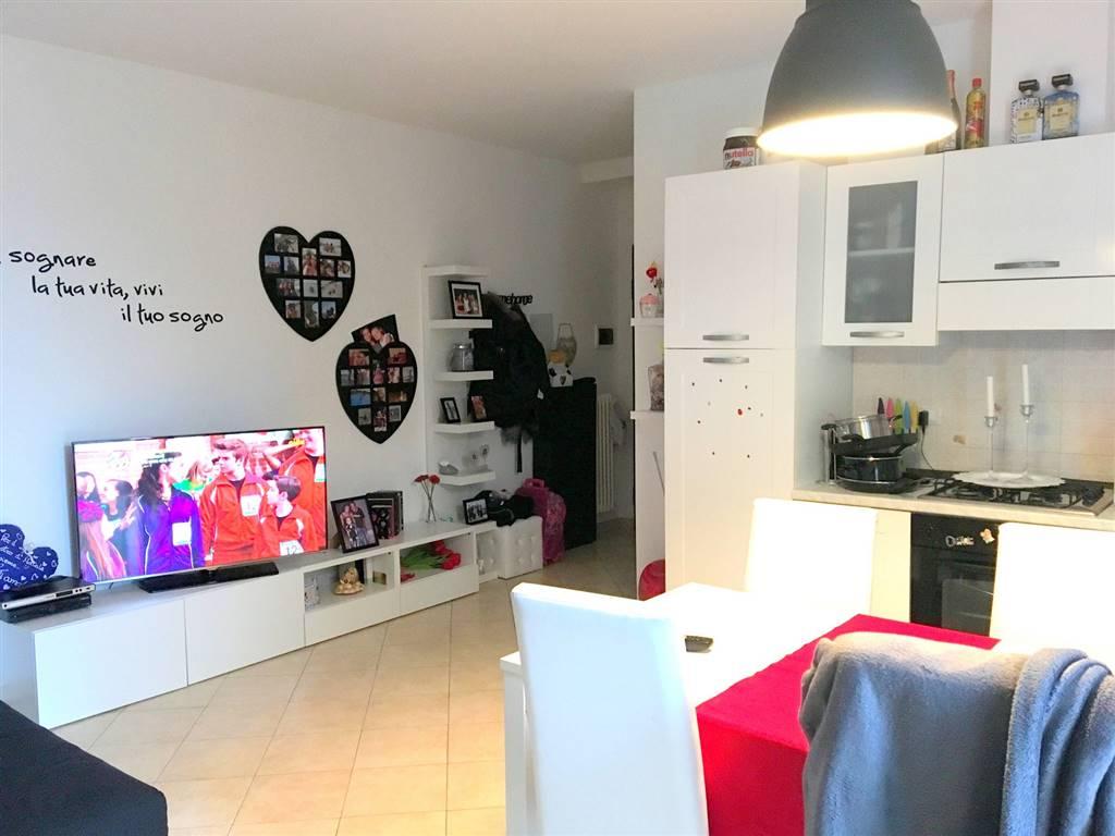 Appartamento in Affitto a Sarzana
